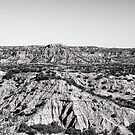 Caprock Canyon by Dennis Wells