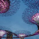 Supertree Grove - Gardens by the Bay, Singapore by Michelle Golden