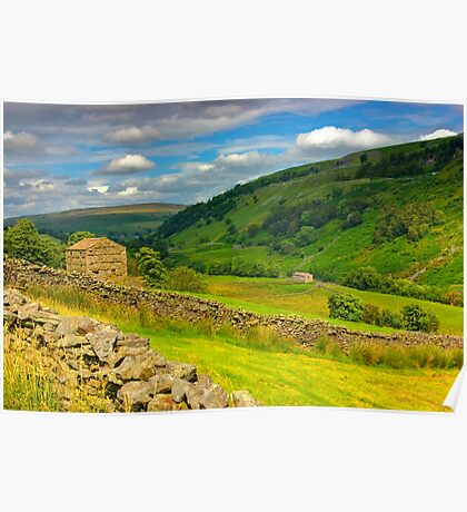 In The Dales Poster