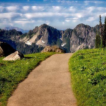Paradise Trail - Mt. Rainier National Park by kdxweaver