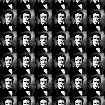 Beneath The Skin - Poe. by OriginalDP