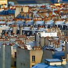 Paris Rooftops by Beth A