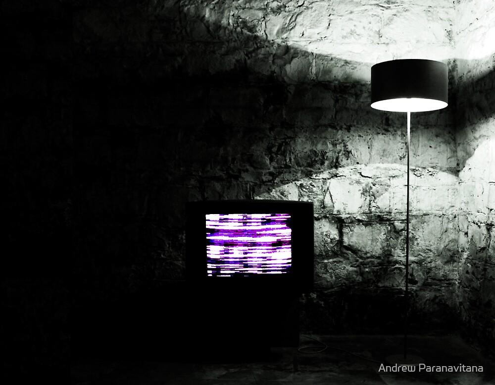 Mindcircus by Andrew Paranavitana