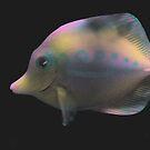 Paper Fish by C-Joy