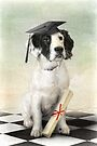 Graduation Day by Trudi's Images