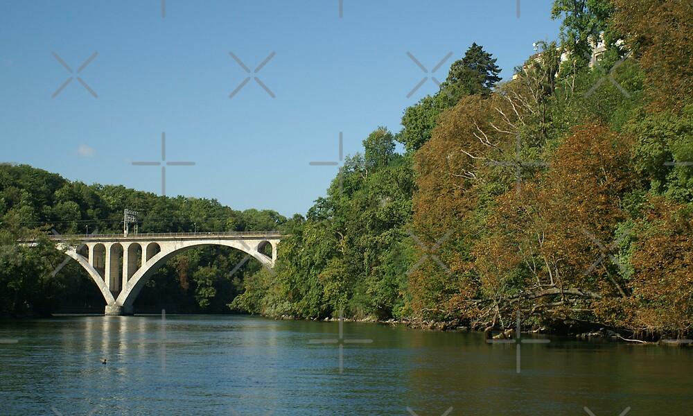 Jonction bridge by poupoune