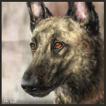 A Painting of a Brindled Dutch Shepherd by ibadishi