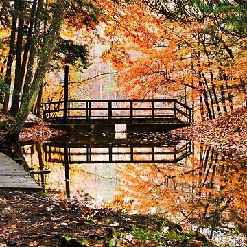 Autumn Bridge by rollosphotos