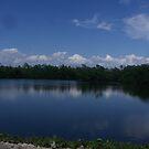 CAPTIVA ISLAND, FLORIDA by MsLiz