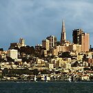 San Francisco Skyline by pat gamwell