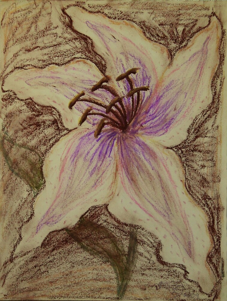 Stargazer Lily in Pastel by Dawna Morton