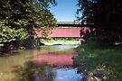 Downstream From The Frazier /  Moreland Covered Bridge by Gene Walls