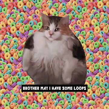 Loops Brother Kitty by ArtsyPrincess