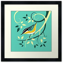nuthatch prints