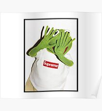 Kermit hates Paparazzi Poster