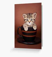Funny striped kitten in a cup Greeting Card