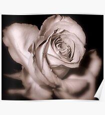 Rosebud Victoriana Poster