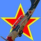 Red Star Yakovlev Yak-52 VH-VVS by muz2142