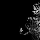 Decorative swirly design black and white by Anteia