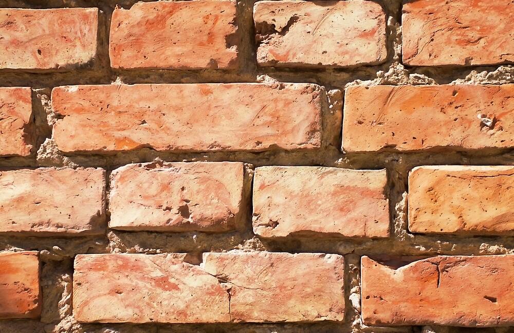 Brick wall. by Yauheni