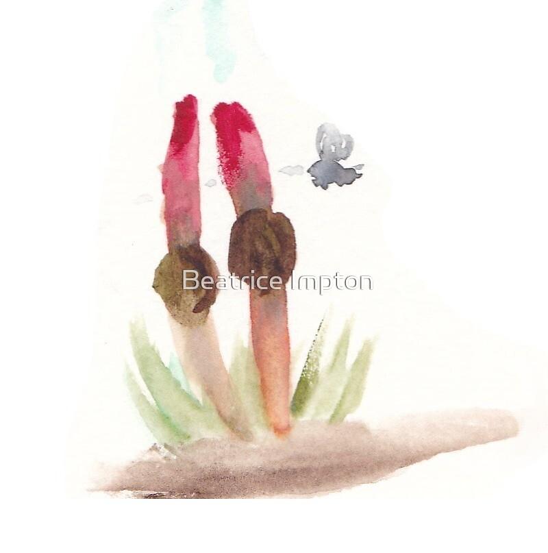 stinkhorn by Beatrice Impton