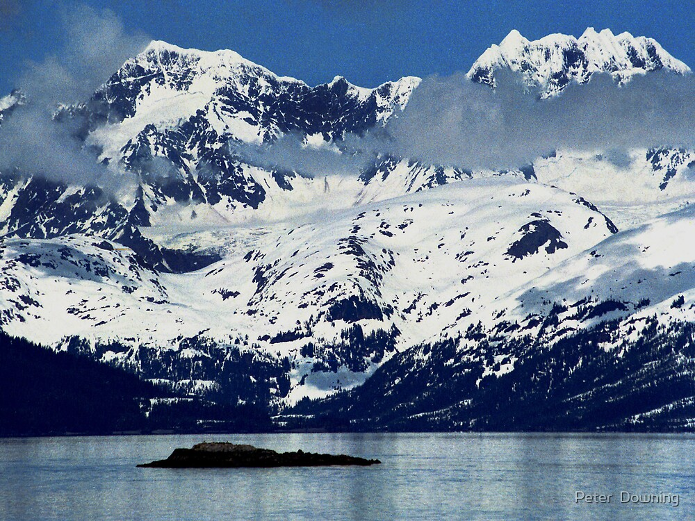 Quot Alaska Glacier Bay National Park Quot By Peter Downing