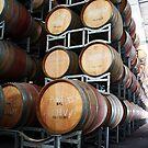 Pinot Lees by Di Jenkins