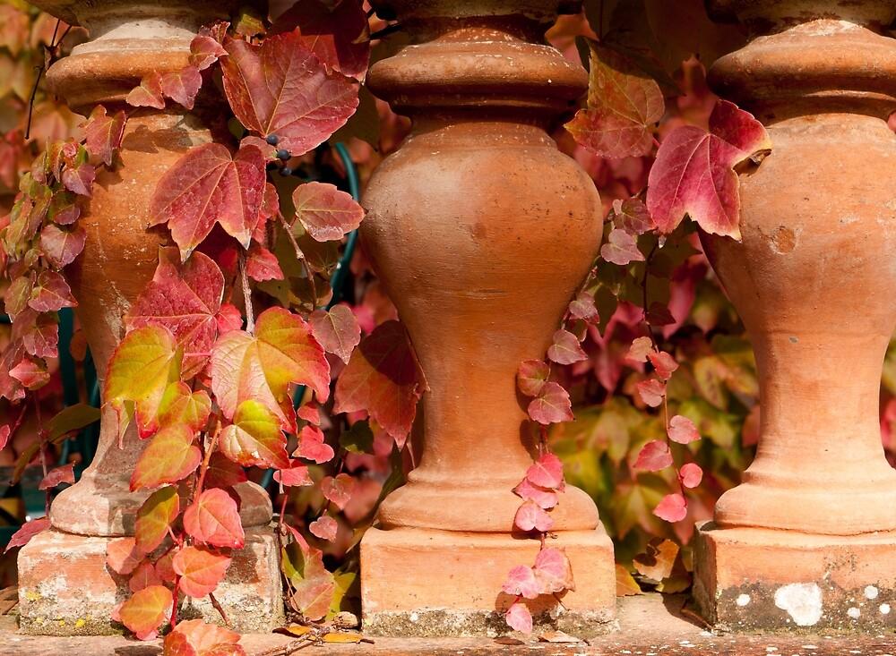 Terra Cotta Autumn by Rae Tucker