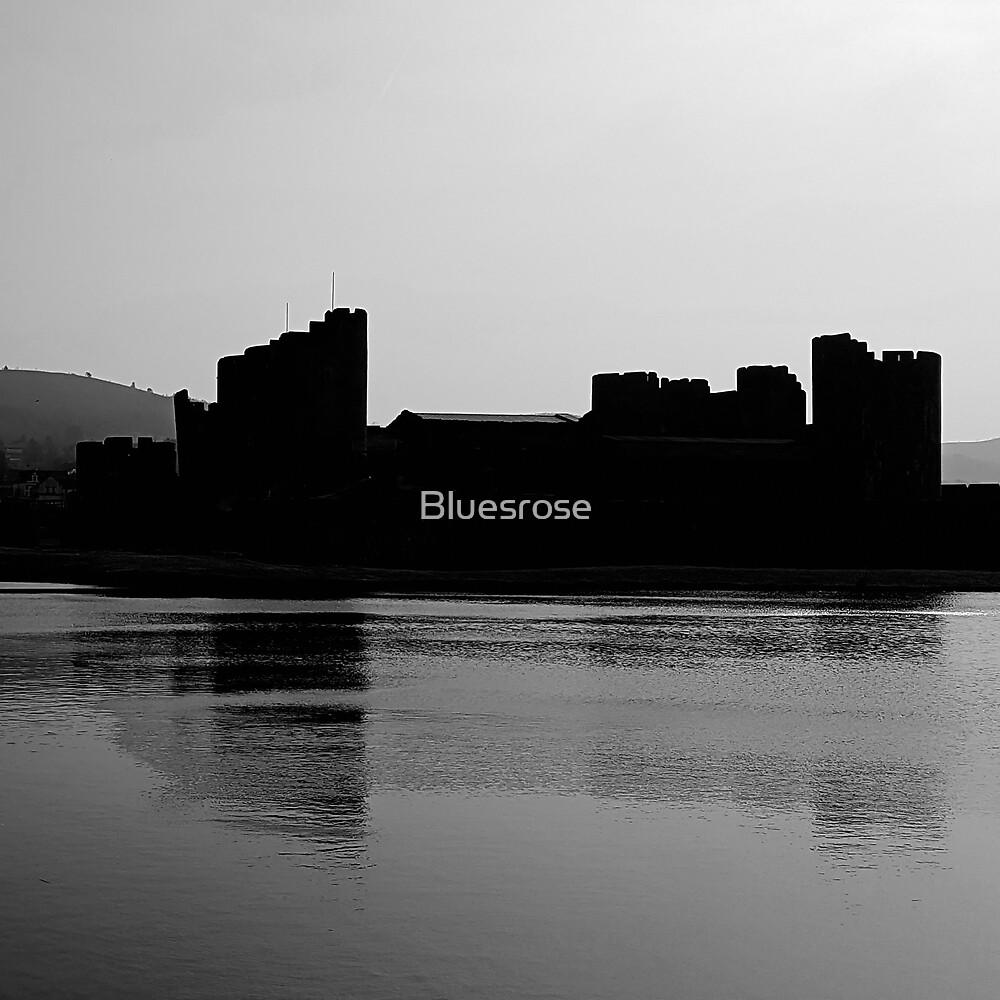 Caerphilly castle by Bluesrose