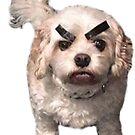 Angry Doggo by Elisecv