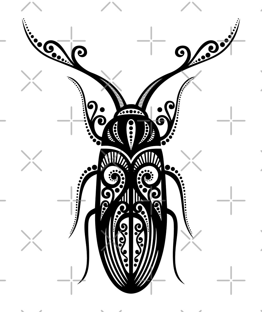 Black and White Illustration of Exotic Beetle by lissantee