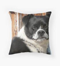 I'm Butch.. Throw Pillow