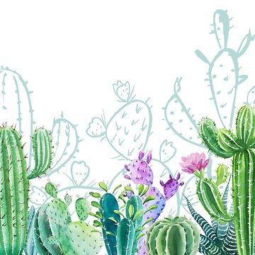 Cacti bloom by creative97