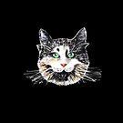 Fat Cat by Emma Kaufmann