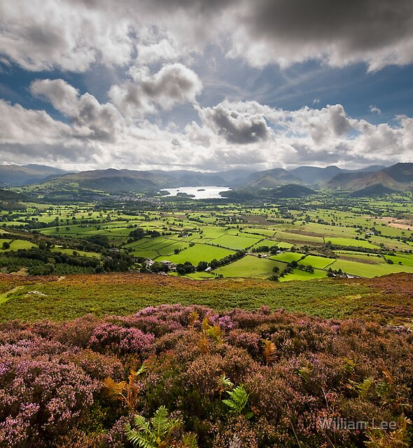 From Skiddaw to Keswick by William Lee