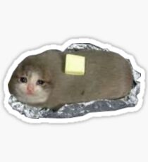 Katzenkartoffel Sticker