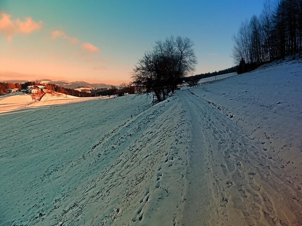 Hiking through winter wonderland | landscape photography by Patrick Jobst