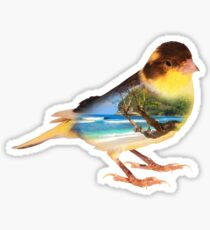 Canary Bird Island Bird Nature Birding T-Shirt Sticker