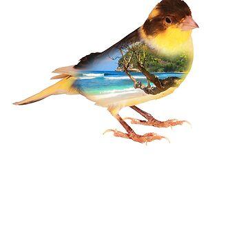 Canary Bird Island Bird Nature Birding T-Shirt by Ducky1000