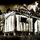 Historic Davis Homestead - Pokapu, Kawakawa. by Lynne Haselden
