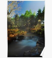 Kerosine creek thermal stream, Rotorua Poster