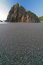 West coast beach by Paul Mercer