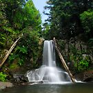 Waiau falls Coromandel by Paul Mercer
