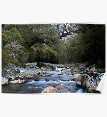 Cledau River,Fiordland National Park Poster