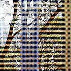 Through the Blinds  by Ethna Gillespie