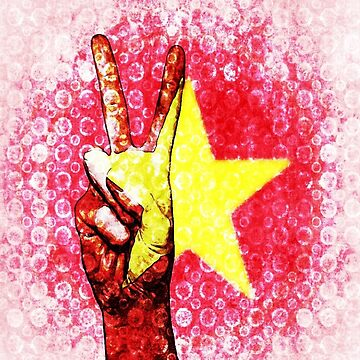 Flag of Vietnam by Deestylistic