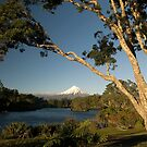 Mount Taranaki 5 by Paul Mercer