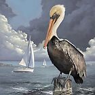 Pelican by Jeff Powers Illustration