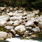 Rockin River by Josh Prior