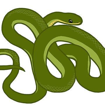 Rough Green Snake by wildlifeandlove
